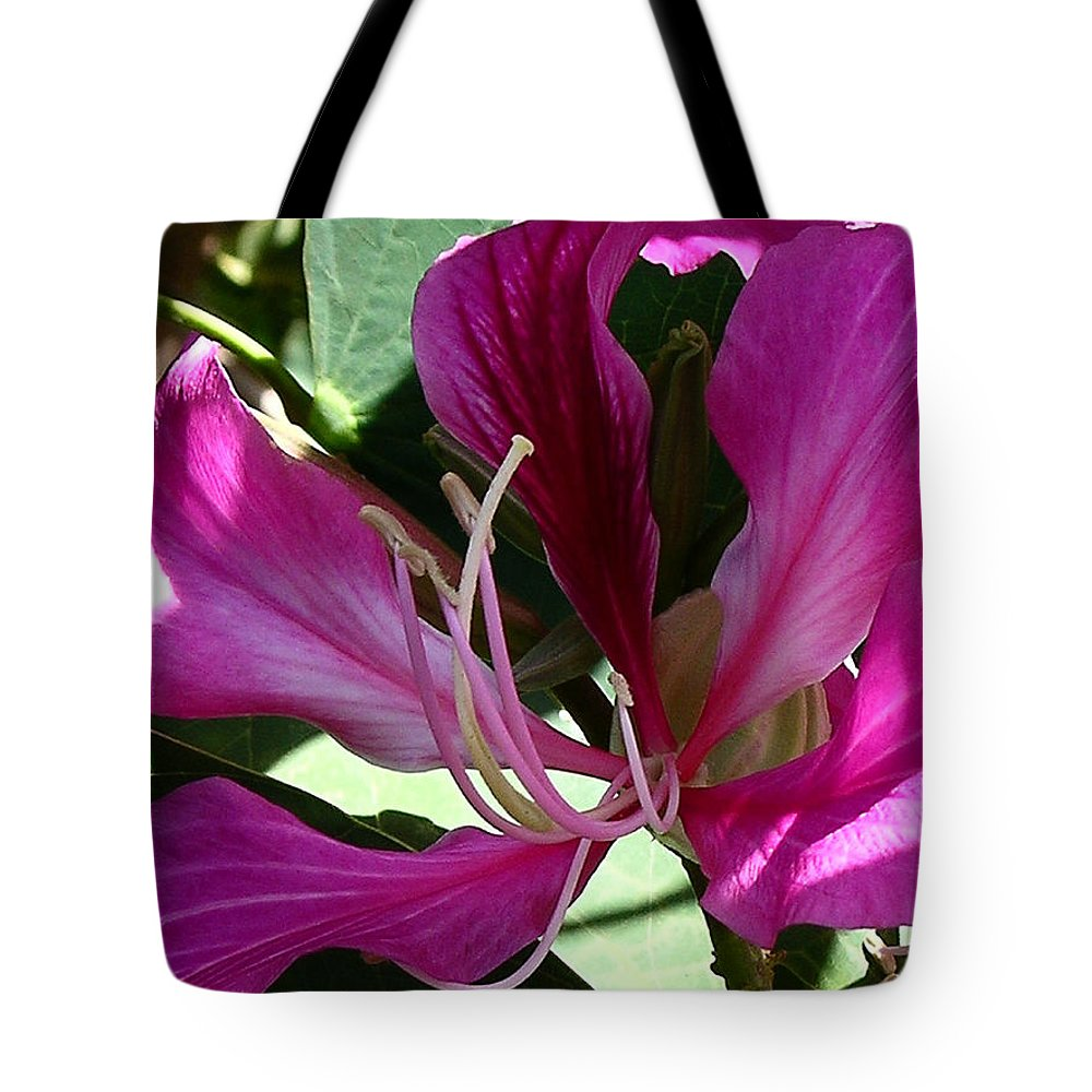 Hong Kong Orchid Tree Tote Bag featuring the photograph Hawaiian Pride by James Temple