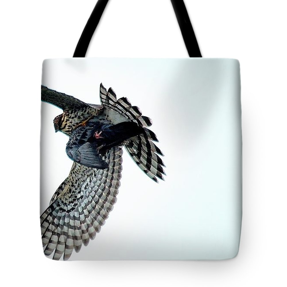 Osprey Flying Away With Prey Tote Bag featuring the photograph Osprey Flying Away With Prey by Charles J Pfohl