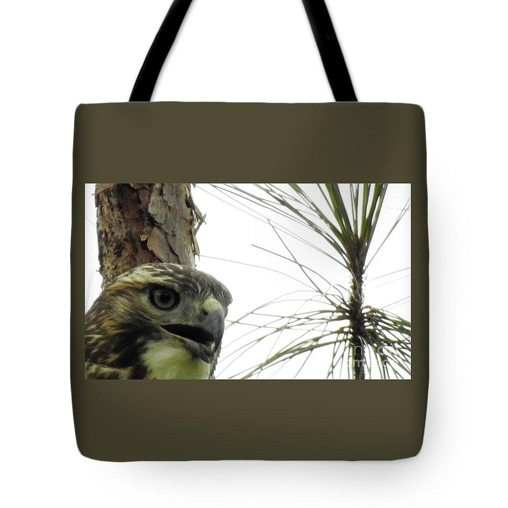 Hawk Tote Bag featuring the photograph Hawkish by Jan Gelders