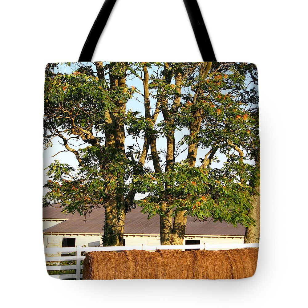Landscape Tote Bag featuring the photograph Hay Bales And Trees by Todd Blanchard