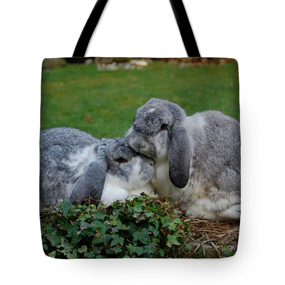 Rabbits Tote Bag featuring the photograph Headrest by Lynne Iddon