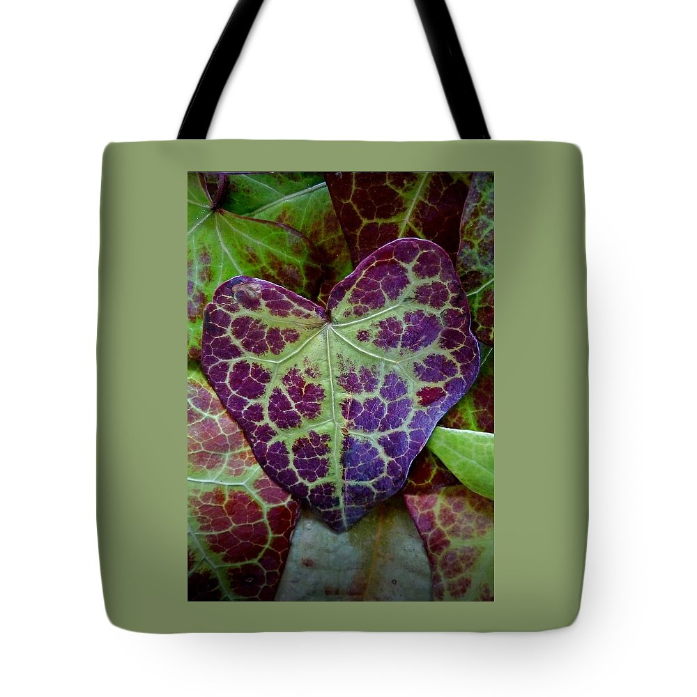 Fall Tote Bag featuring the photograph Heart Leaf by Patricia Strand