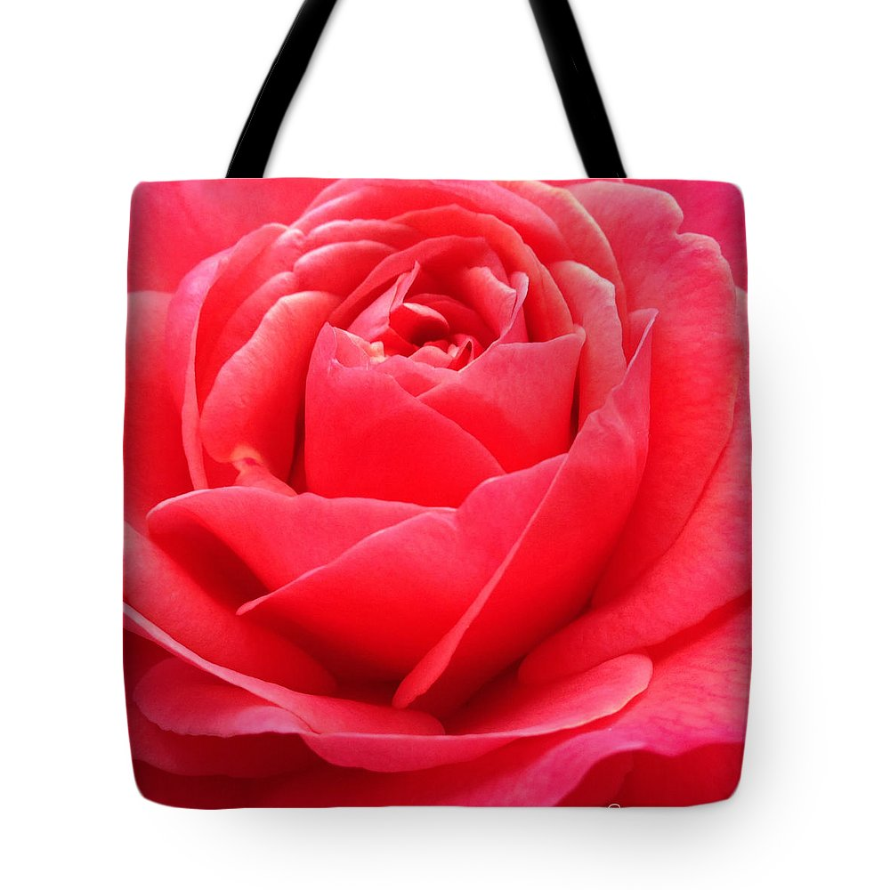 Hearts Desire Red Rose Tote Bag featuring the photograph Hearts Desire Red Rose by Anna Porter
