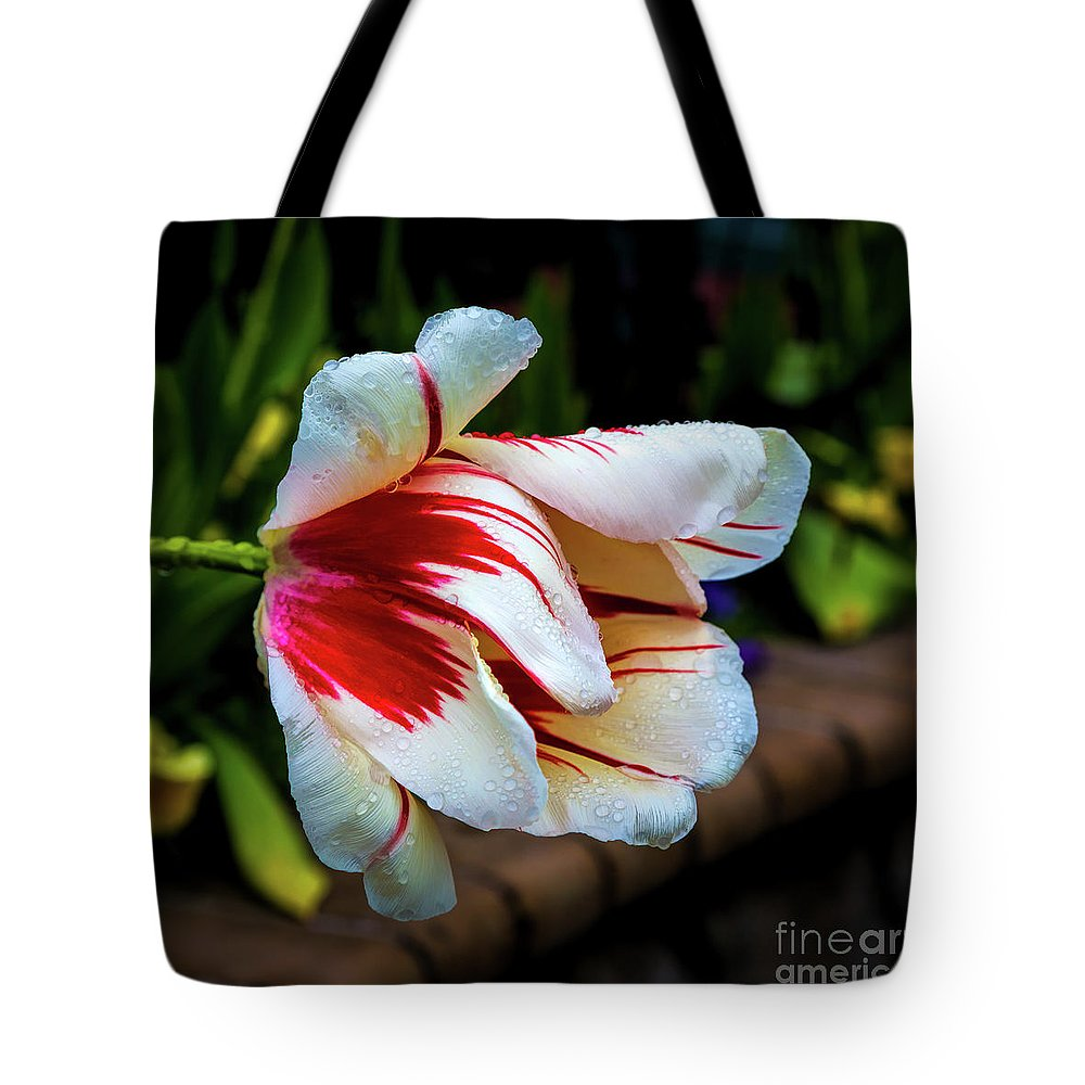 Jon Burch Tote Bag featuring the photograph Heavy With Dew by Jon Burch Photography