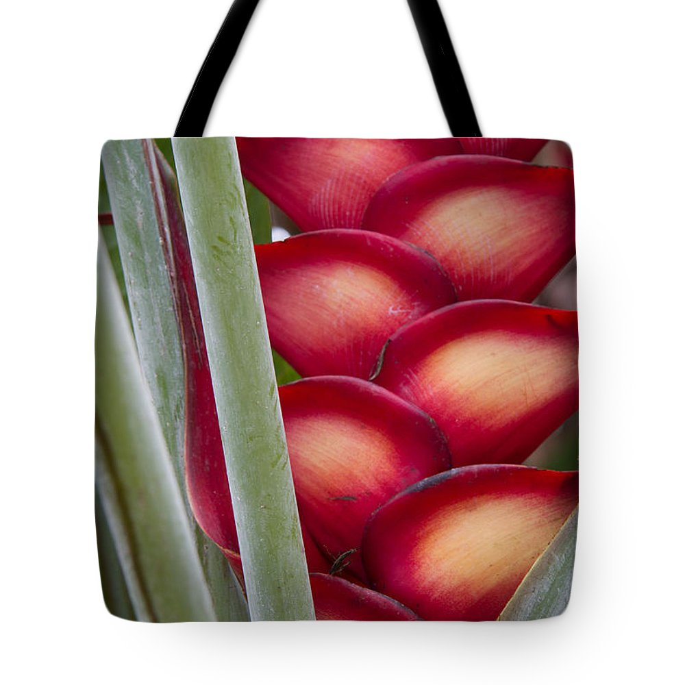 Heliconia Tote Bag featuring the photograph Heliconia by Roger Mullenhour
