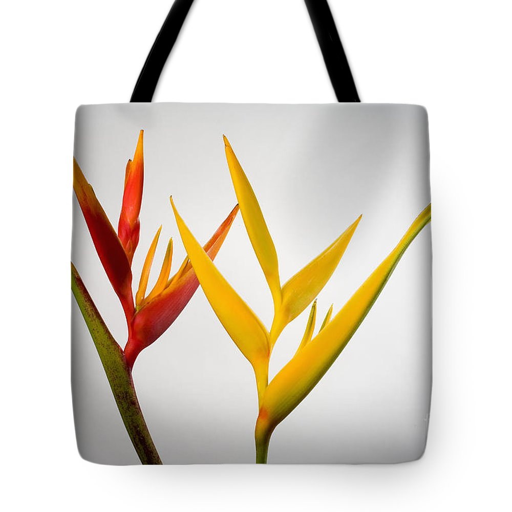 Botanical Tote Bag featuring the photograph Heliconia by Tomas del Amo - Printscapes
