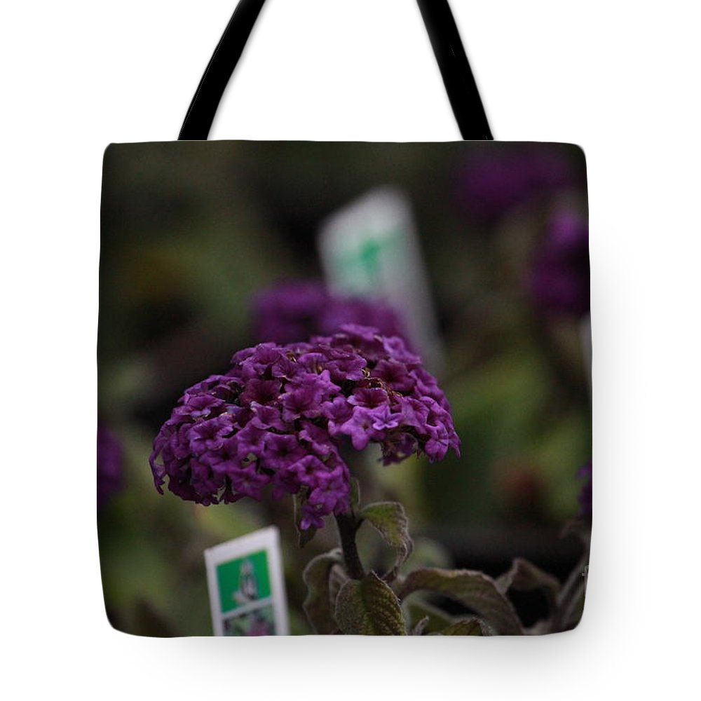 Heliotrope Tote Bag featuring the photograph Heliotrope by Leanne Matson