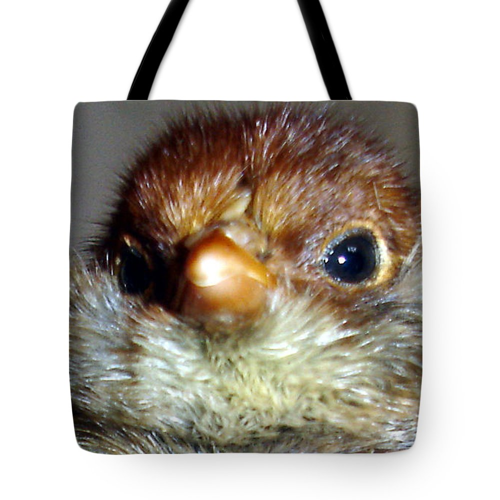 Chick Tote Bag featuring the photograph Hello Chick by Susan Baker