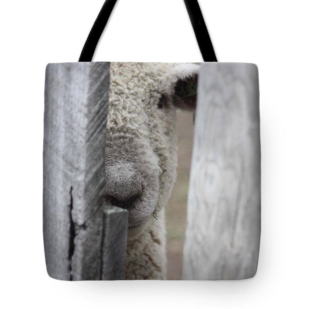 Farm Tote Bag featuring the photograph Hello by Susan Joorfetz