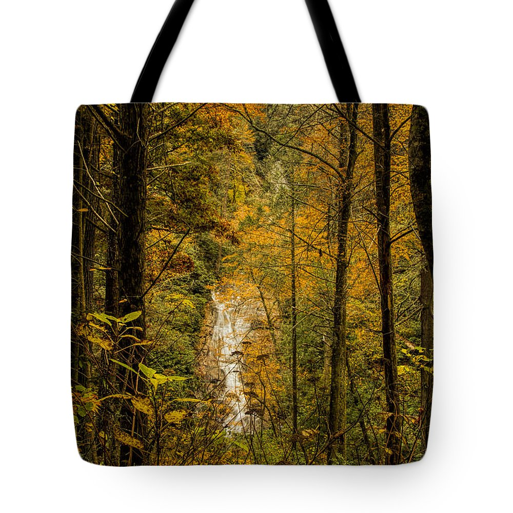 Helton Falls Tote Bag featuring the photograph Helton Falls Through The Leaves by Barbara Bowen
