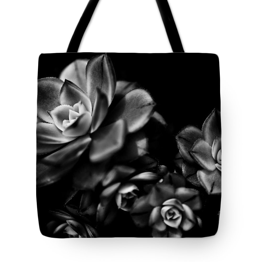 Botanical Tote Bag featuring the photograph Hens And Chicks 2 by Venetta Archer