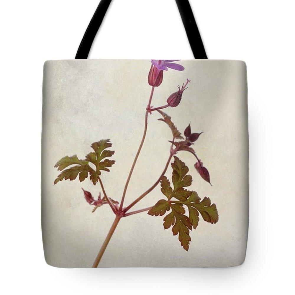 Beautiful Tote Bag featuring the photograph Herb Robert - Wild Geranium  #flower by John Edwards