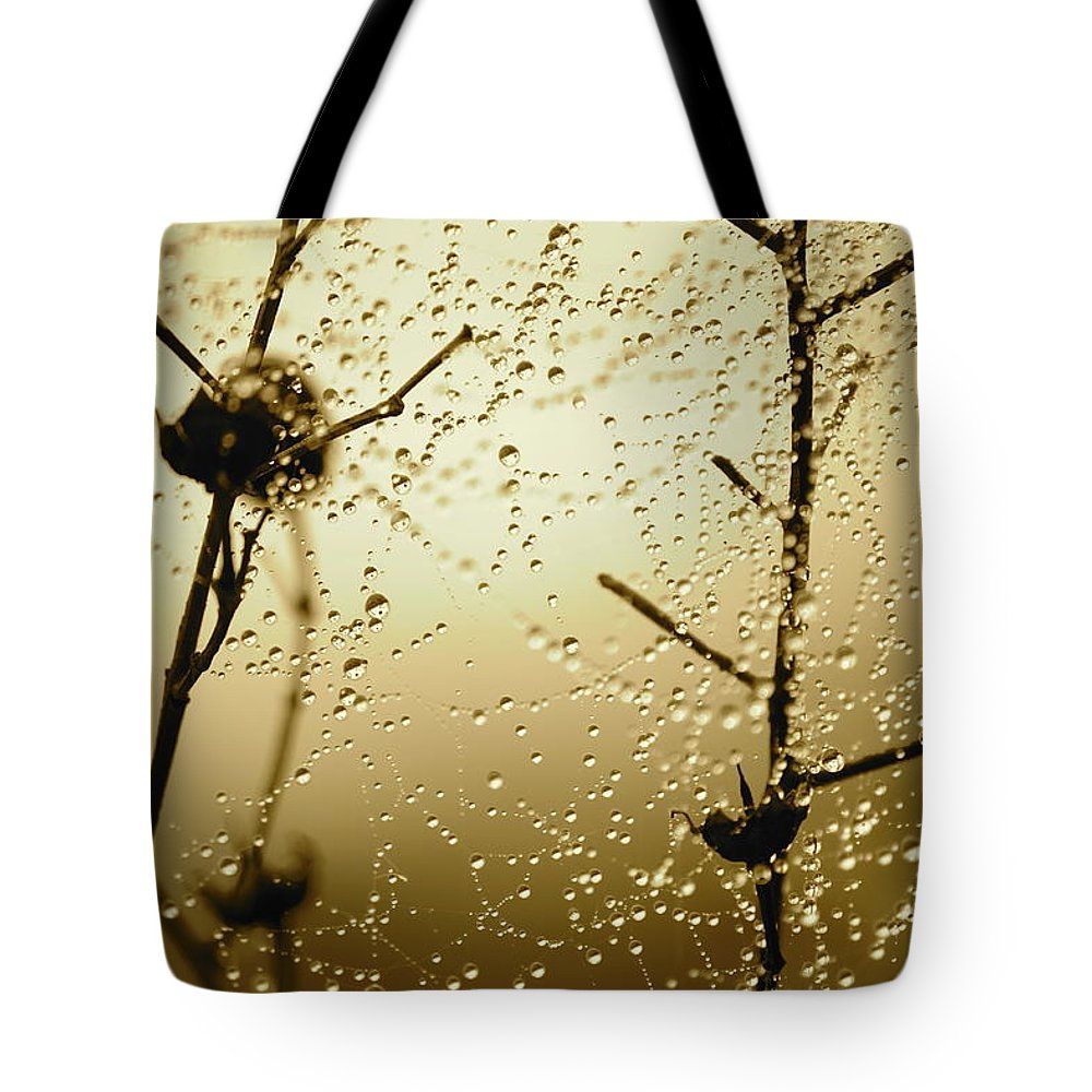 Sunrise Tote Bag featuring the photograph Here Comes The Sun by Carol Groenen