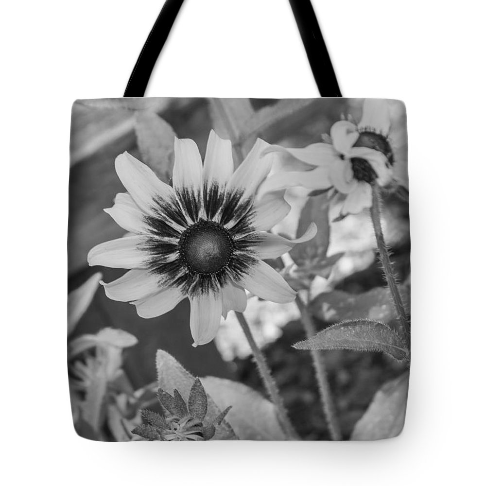 Flower Tote Bag featuring the photograph Here I Am In Black And White by Arlene Carmel