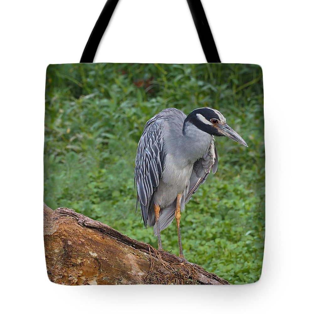 Heron Tote Bag featuring the photograph Heron On Log by Paula Ponath