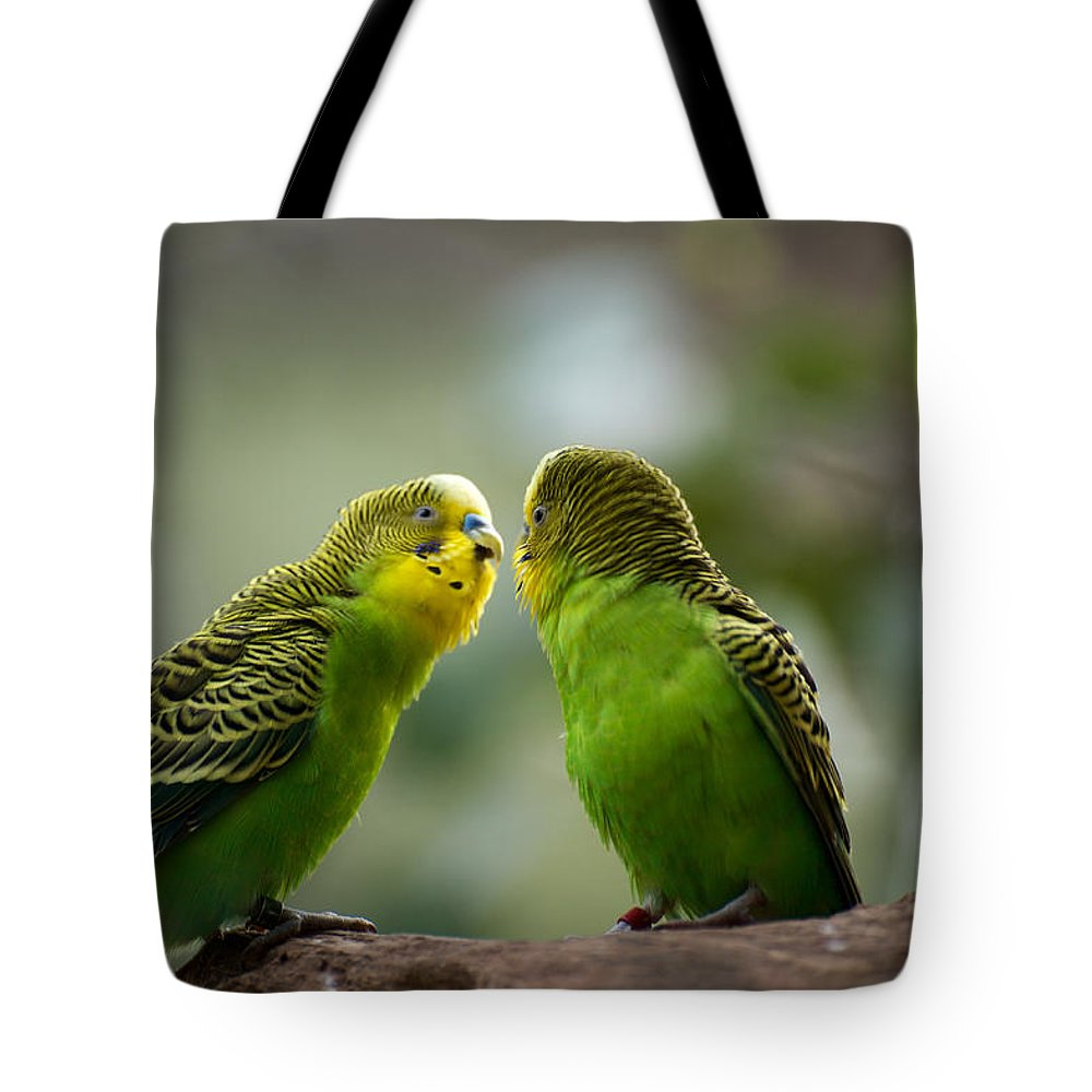 Australian Tote Bag featuring the photograph Hi Gorgeous by Graham Palmer
