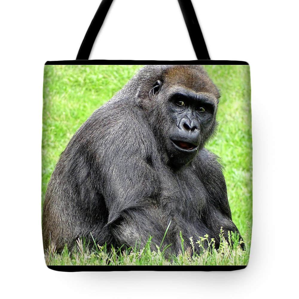 Ape Tote Bag featuring the photograph Hi There by Deborah England