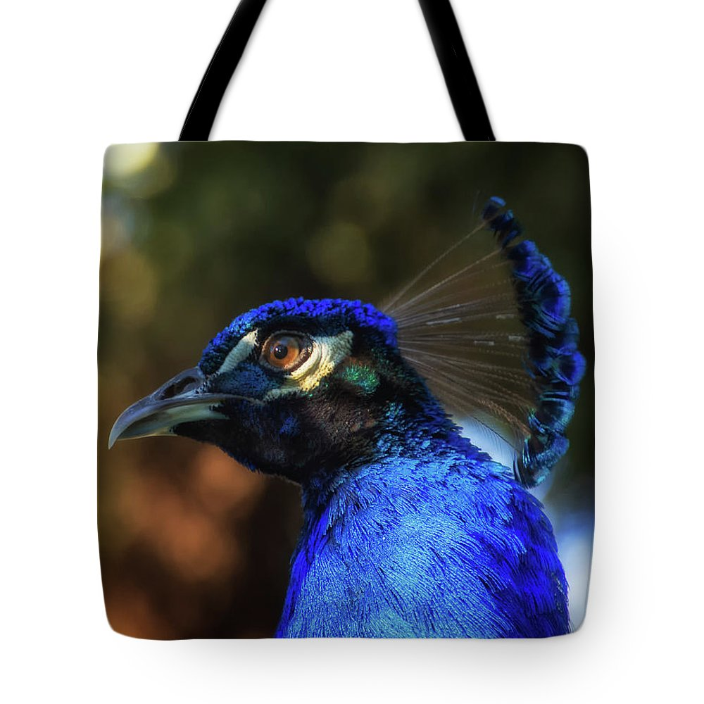 Birds Tote Bag featuring the photograph Hi There by Glenn Thompson