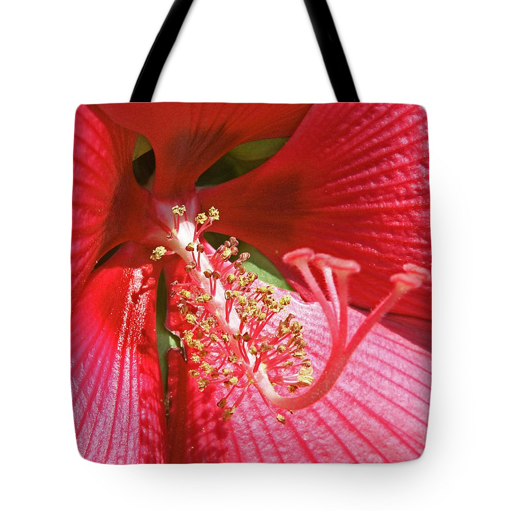 Flowers Tote Bag featuring the photograph Hibiscus by Donna Shahan