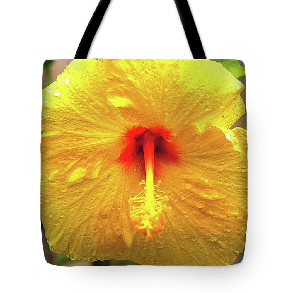 Hibiscus Tote Bag featuring the photograph Hibiscus Flower After The Rain by Michael Courtney