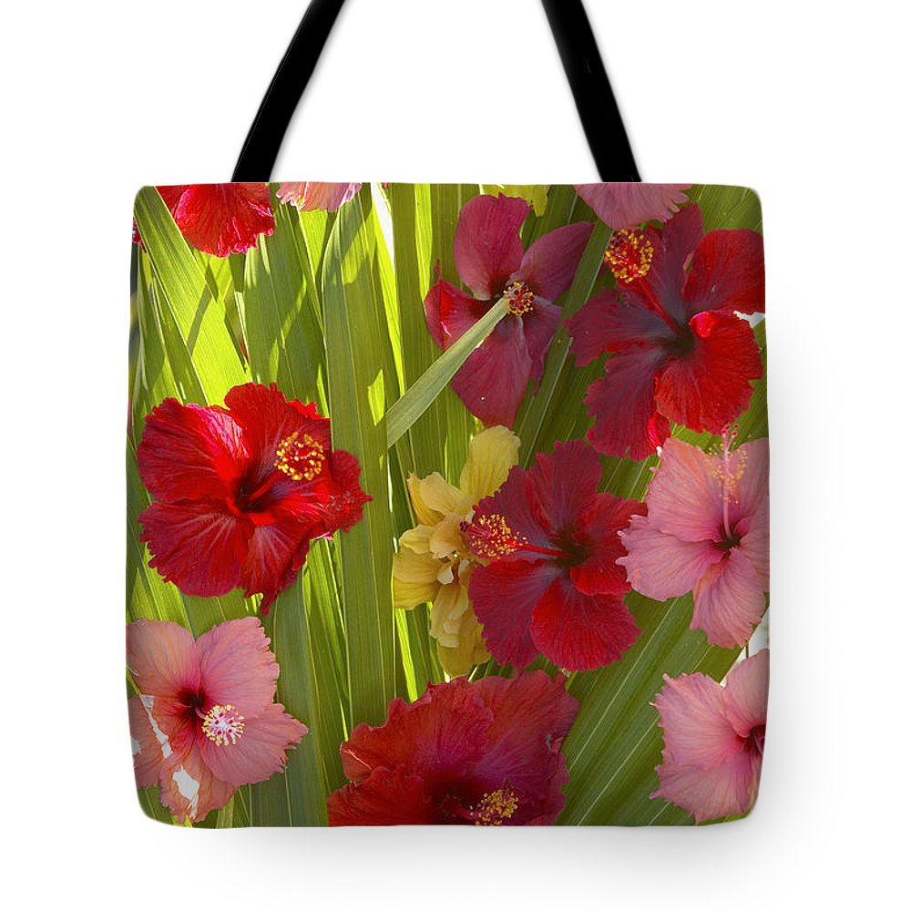 Above Tote Bag featuring the photograph Hibiscus by Kyle Rothenborg - Printscapes