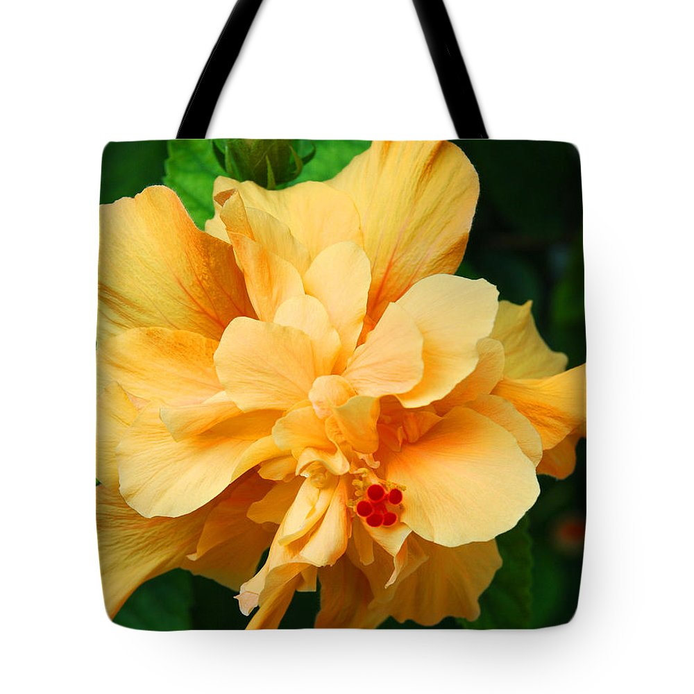 Hibiscus Tote Bag featuring the photograph Hibiscus by Susanne Van Hulst