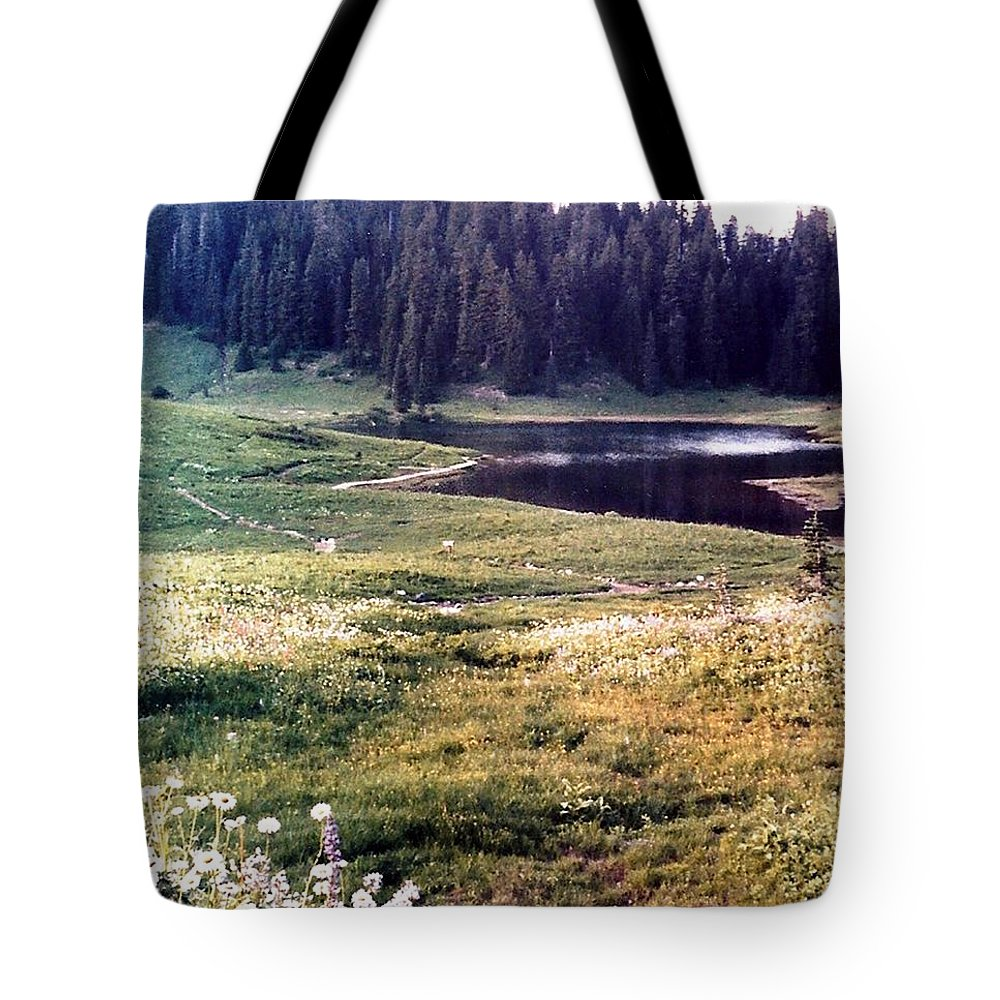 Mountains Tote Bag featuring the photograph Hidden Valley by Carol Allen Anfinsen