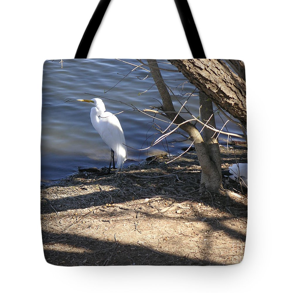 Nature Tote Bag featuring the photograph Hiding And Seeking by Lucyna A M Green