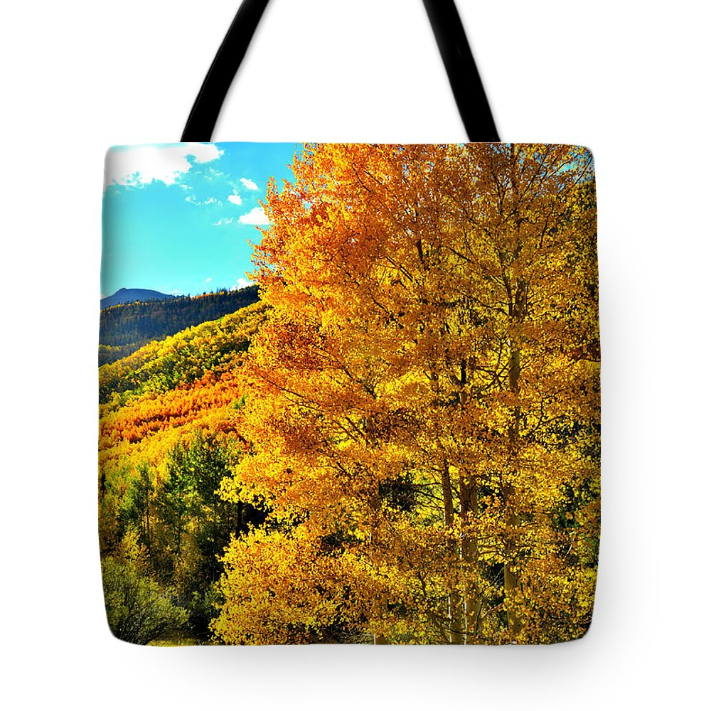 Colorado Tote Bag featuring the photograph High Country Aspens by Ray Mathis