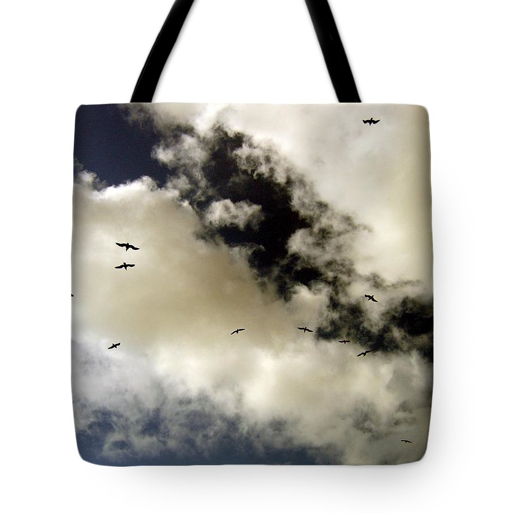 Seagulls Tote Bag featuring the photograph High Flight by Will Borden