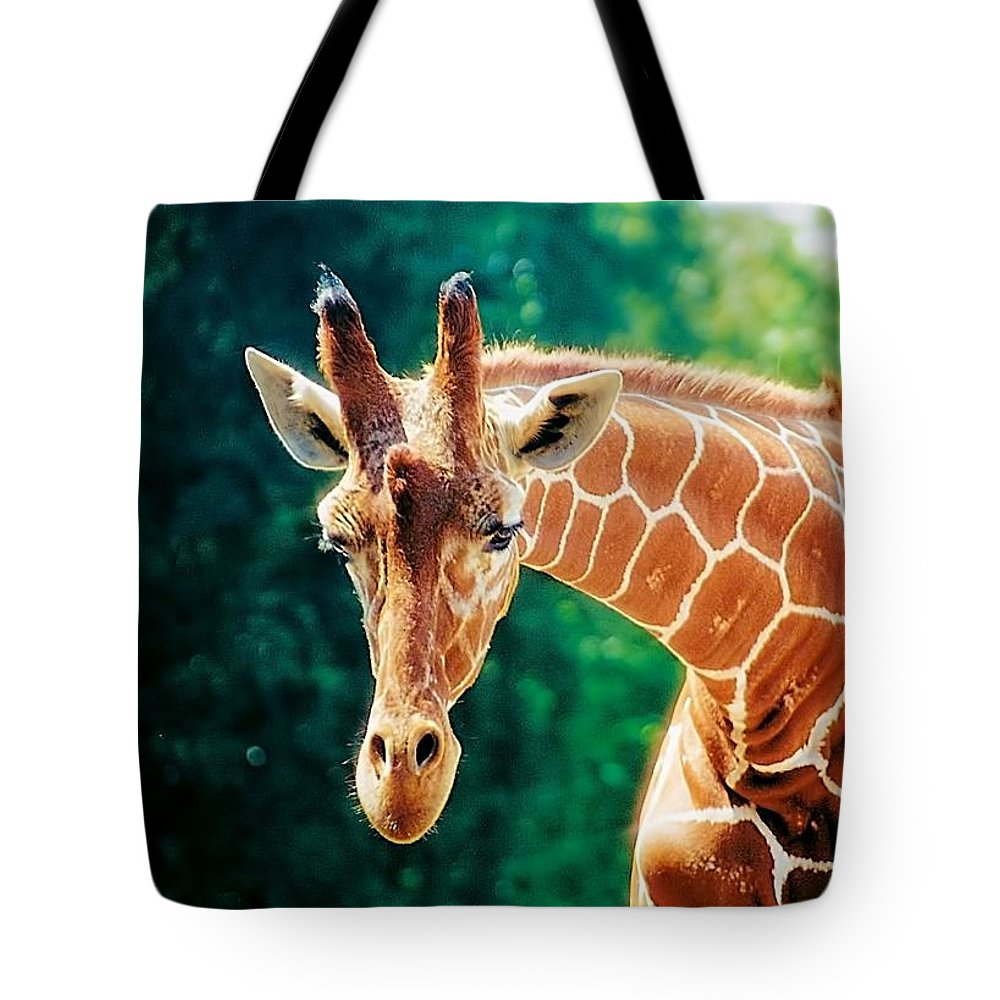 Animals Tote Bag featuring the photograph High Strung by Jan Amiss Photography