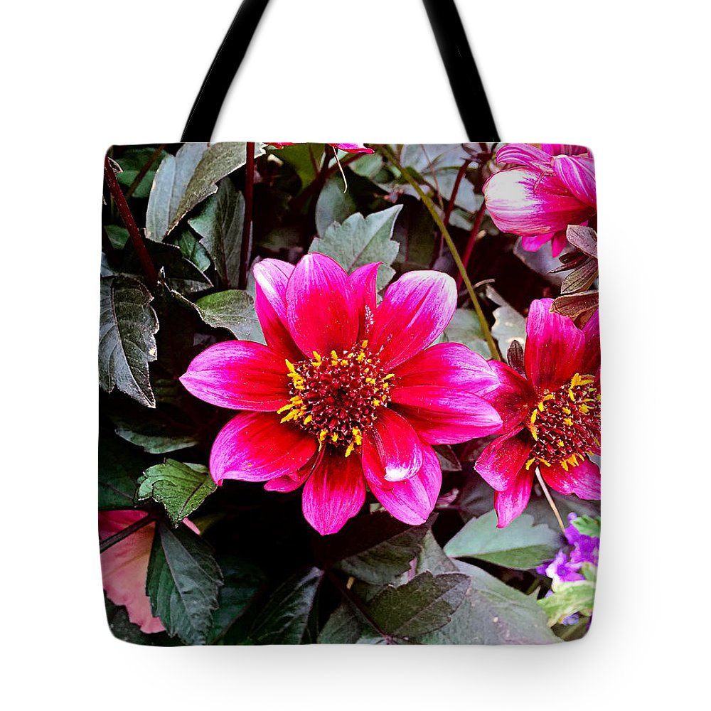 Highlands Tote Bag featuring the photograph Highlands Ranch Floral Study 1 by Robert Meyers-Lussier