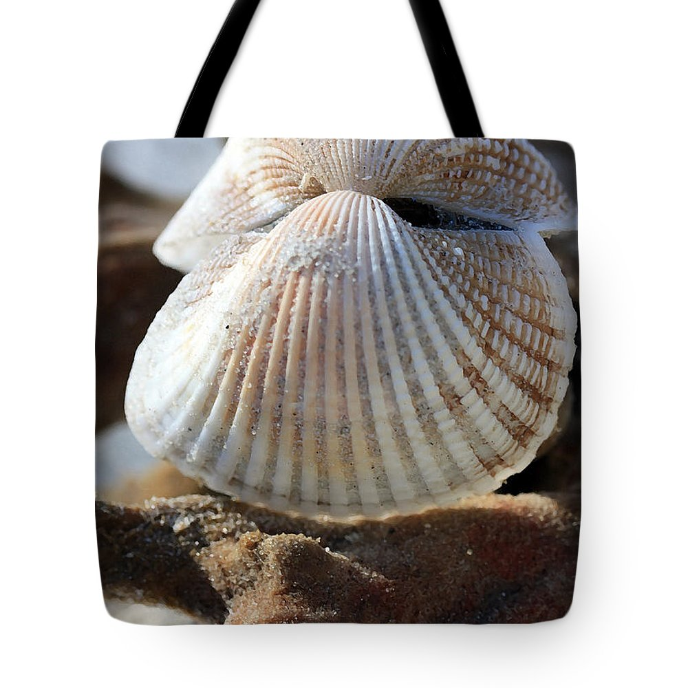 Scallops Tote Bag featuring the photograph Hinged Together by Mary Haber