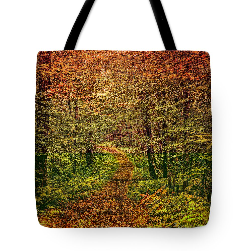 Landscape Tote Bag featuring the photograph Hint of Autumn by Heather Hubbard