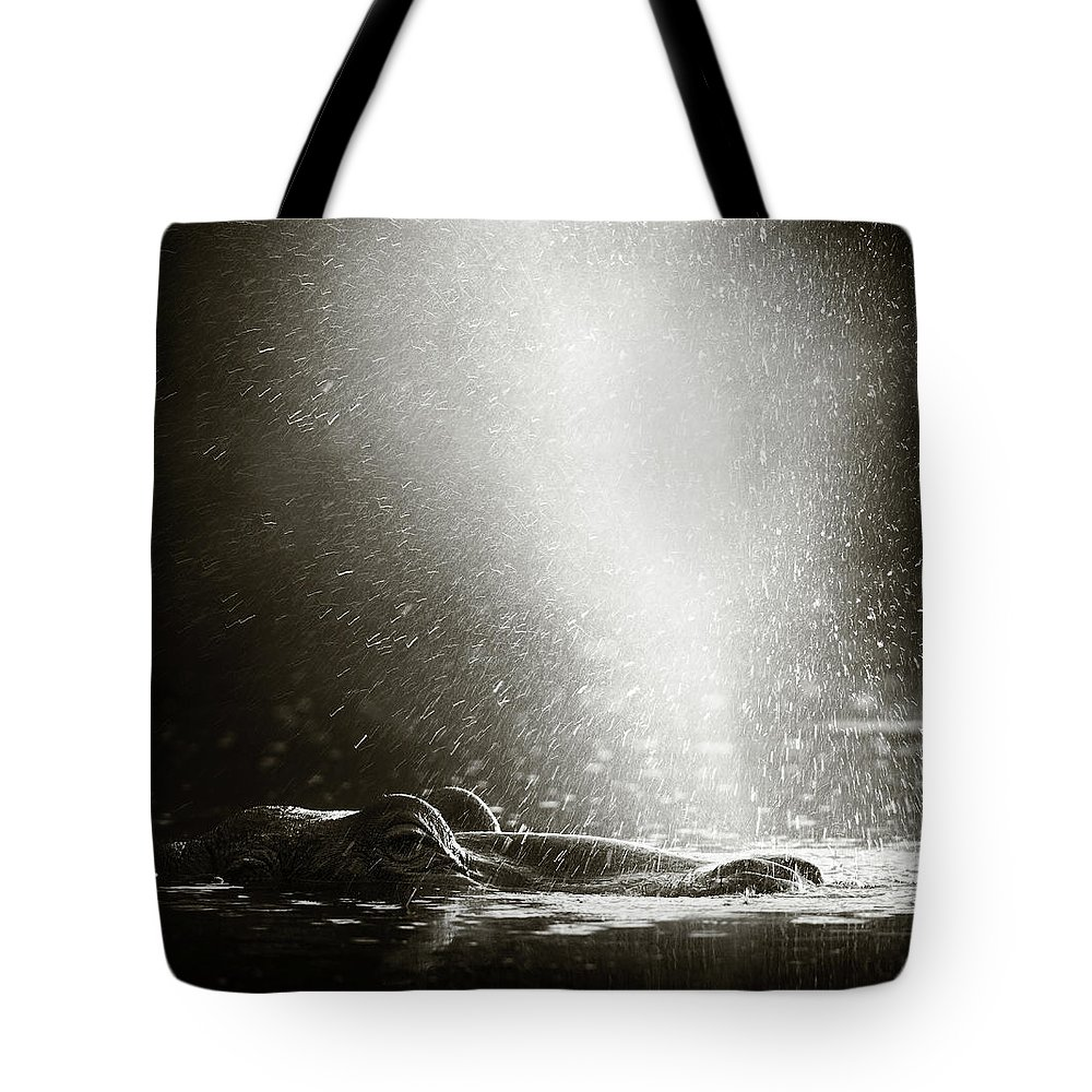 Africa Tote Bag featuring the photograph Hippo Blowing Air by Johan Swanepoel