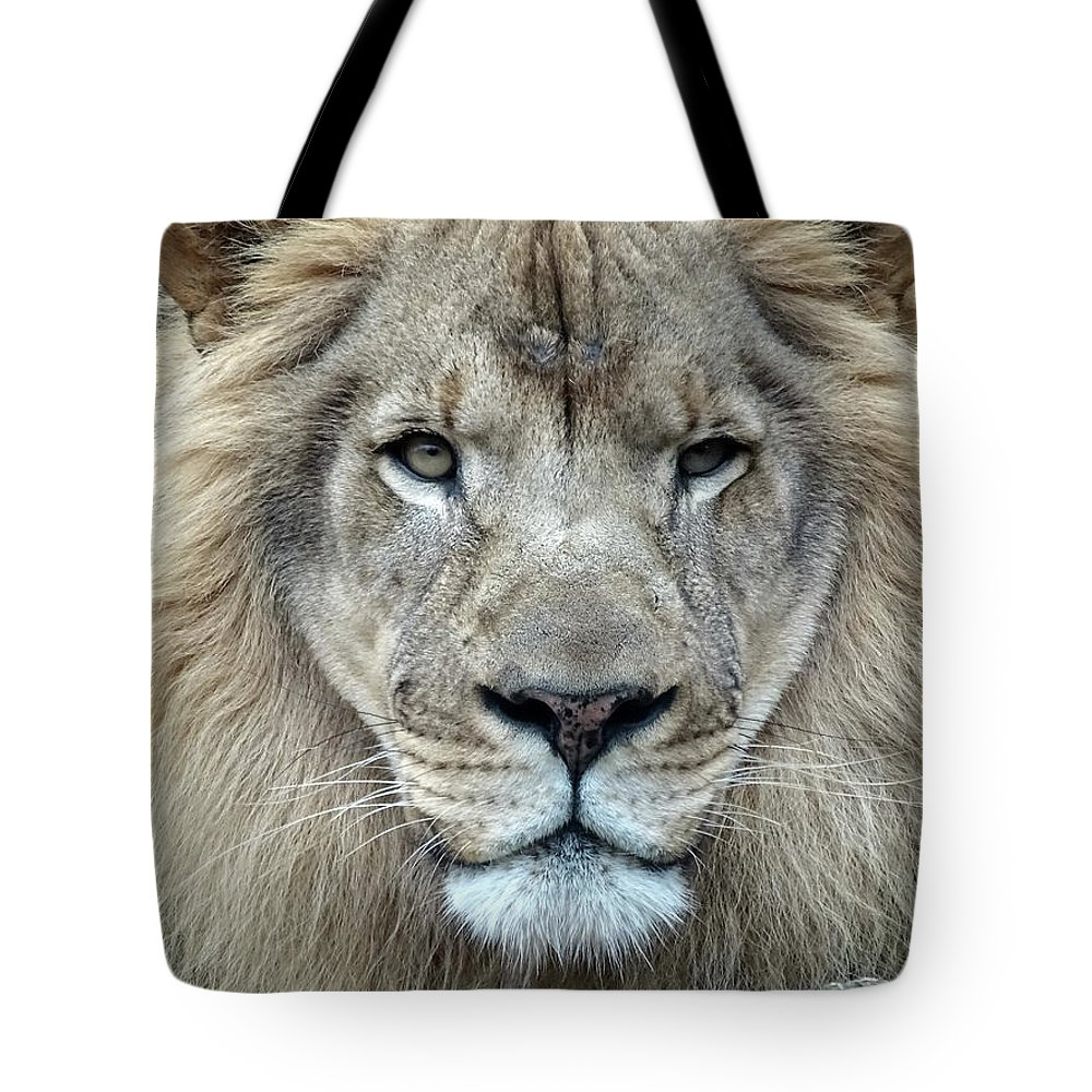 Lion Tote Bag featuring the photograph His Majesty by Deborah England