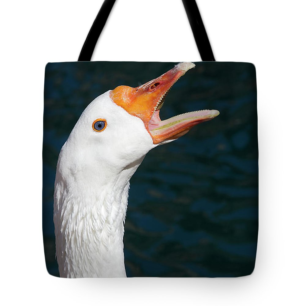 Goose Tote Bag featuring the photograph Hitting High C by Phyllis Denton