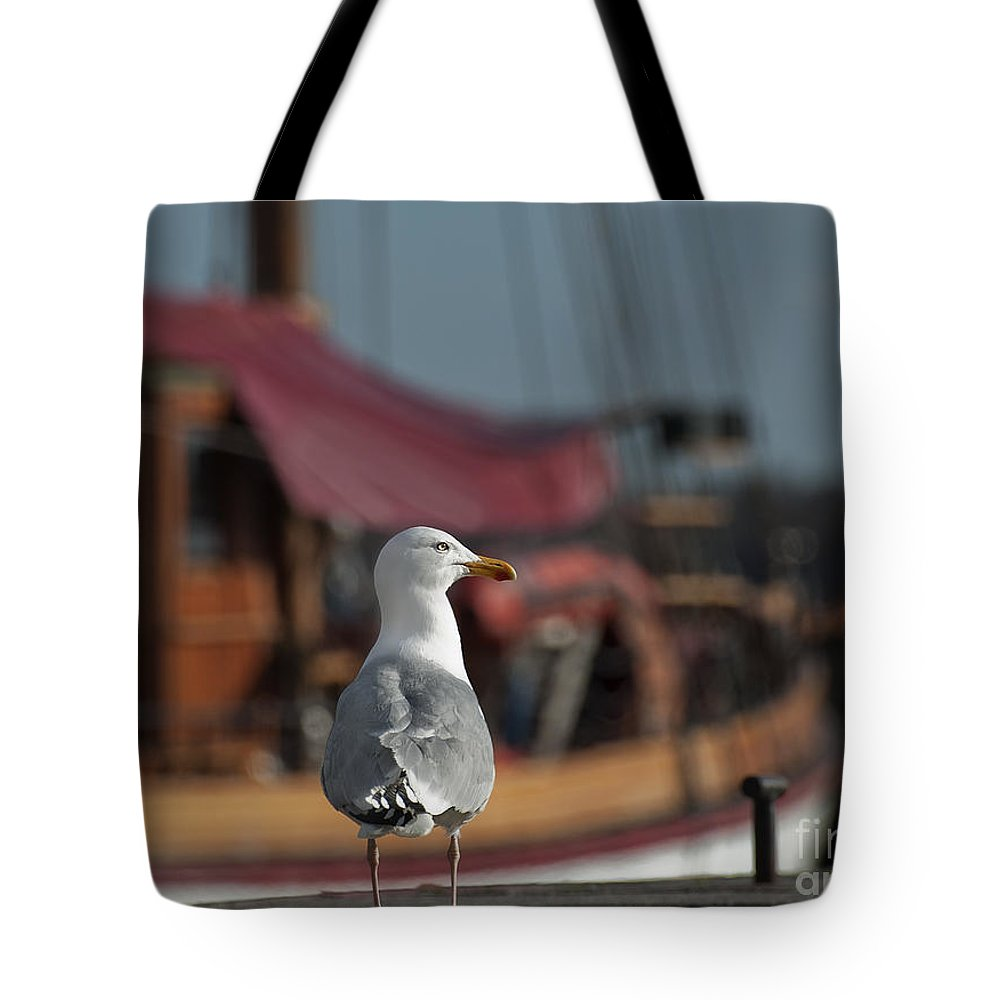Festblues Tote Bag featuring the photograph Hmm... Sooo... East Or West Today... by Nina Stavlund