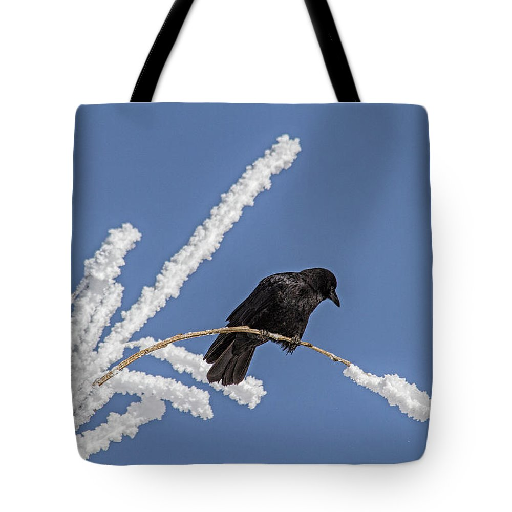 Frost Tote Bag featuring the photograph Hoarfrost and the Crow by Alana Thrower