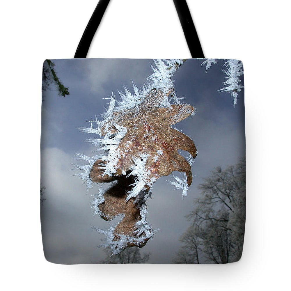 Oak Tote Bag featuring the photograph Hoarfrost On Oak Leaves by Patricia Whitaker