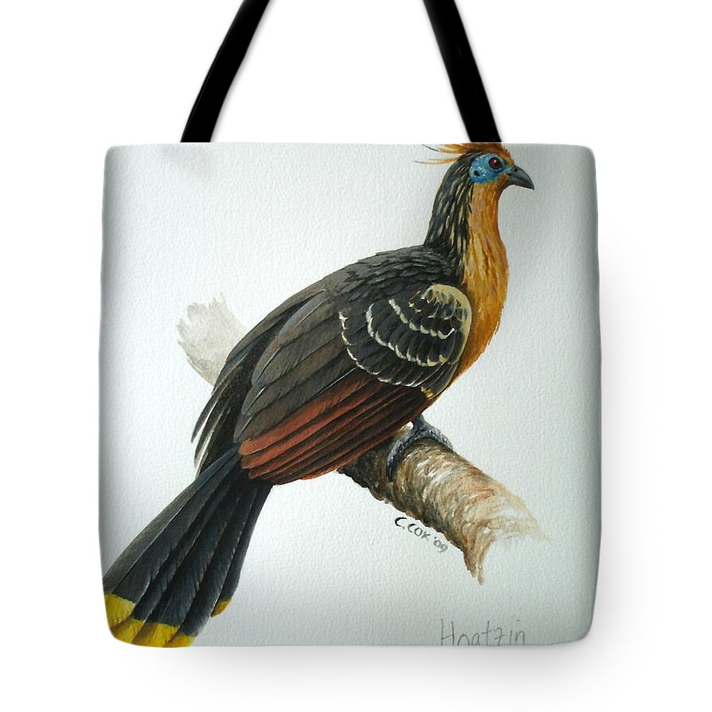Hoatzin Tote Bag featuring the painting Hoatzin by Christopher Cox