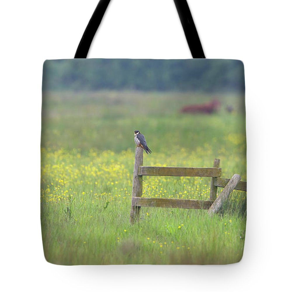 Hobby Tote Bag featuring the photograph Hobby by Peter Walkden