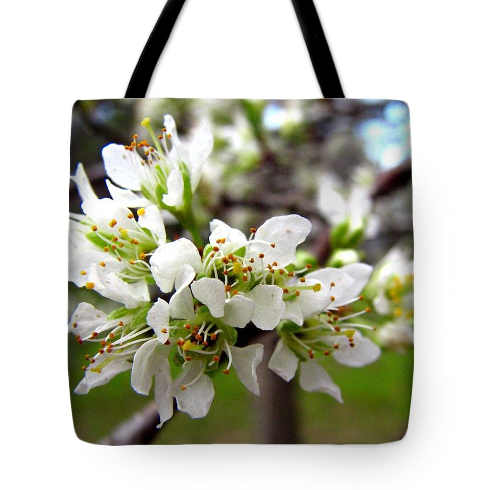Hog Plum Tote Bag featuring the photograph Hog Plum Blossoms by J M Farris Photography
