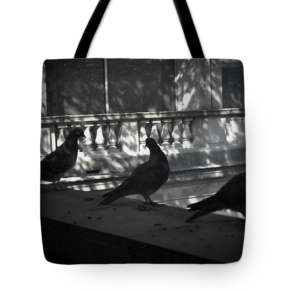 Birds Tote Bag featuring the photograph Holding Court by Tim Nyberg