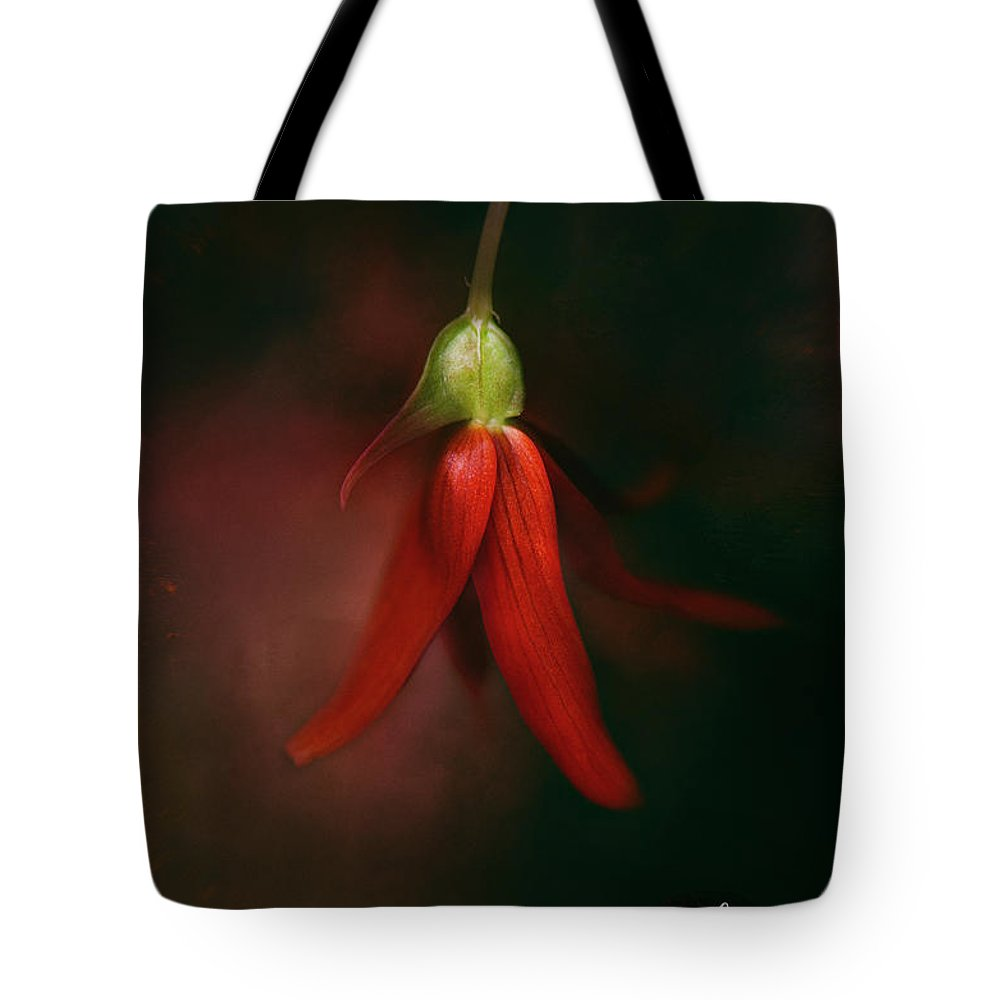 Rrea Brown Photography Tote Bag featuring the photograph Holiday Cheer by Rrea Brown