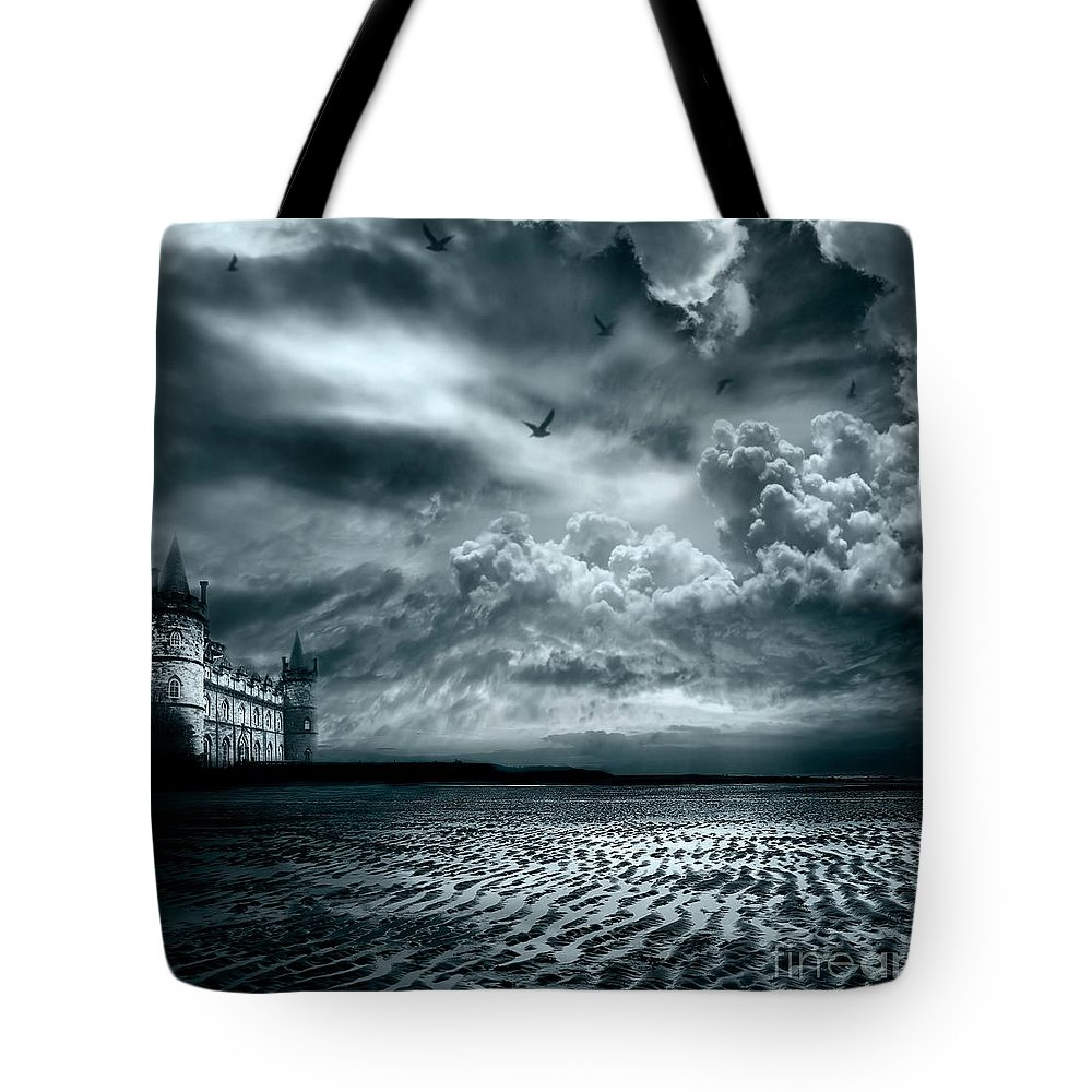 Beach Tote Bag featuring the photograph Home by Jacky Gerritsen