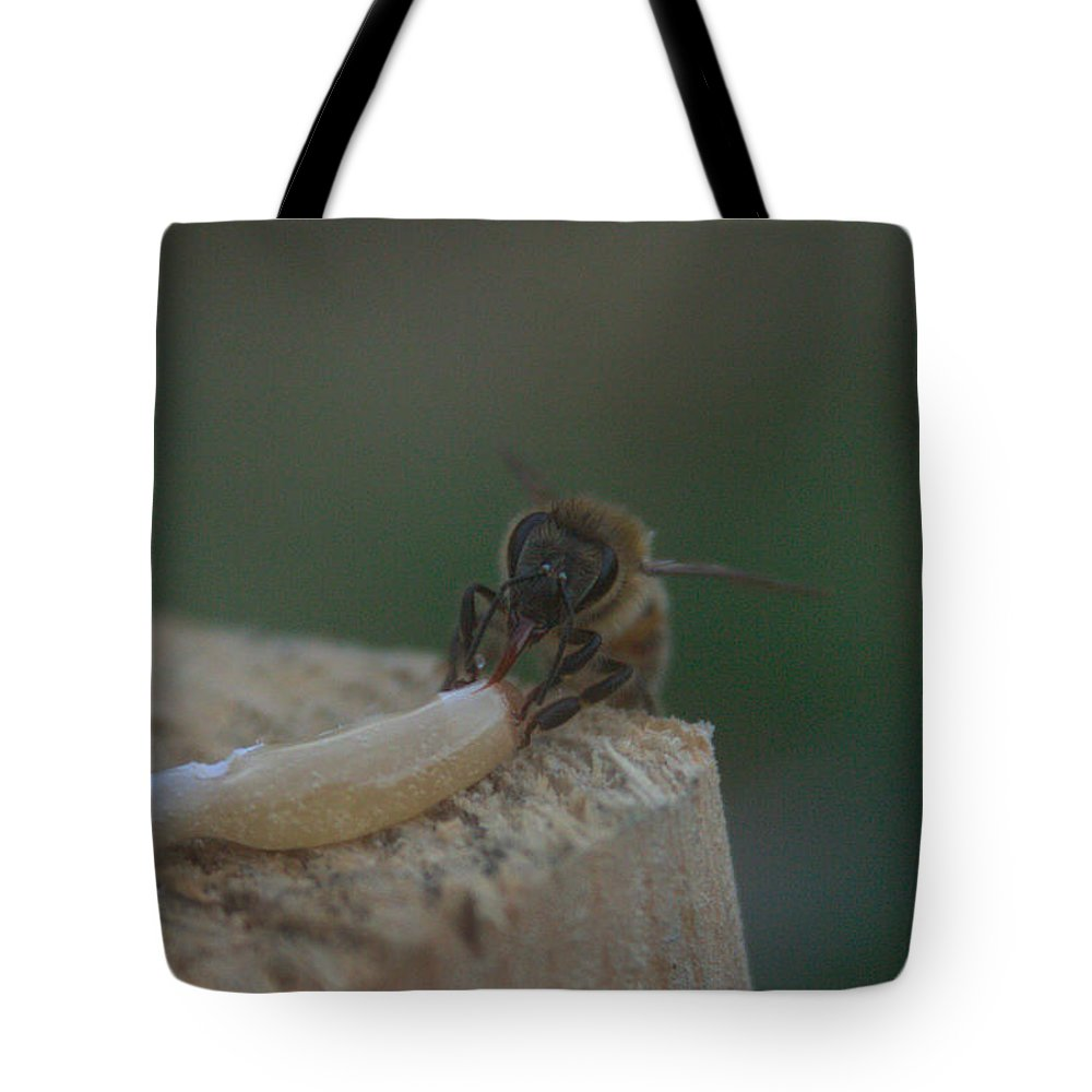 Honey Tote Bag featuring the photograph Honey Bee by Natalie Hood