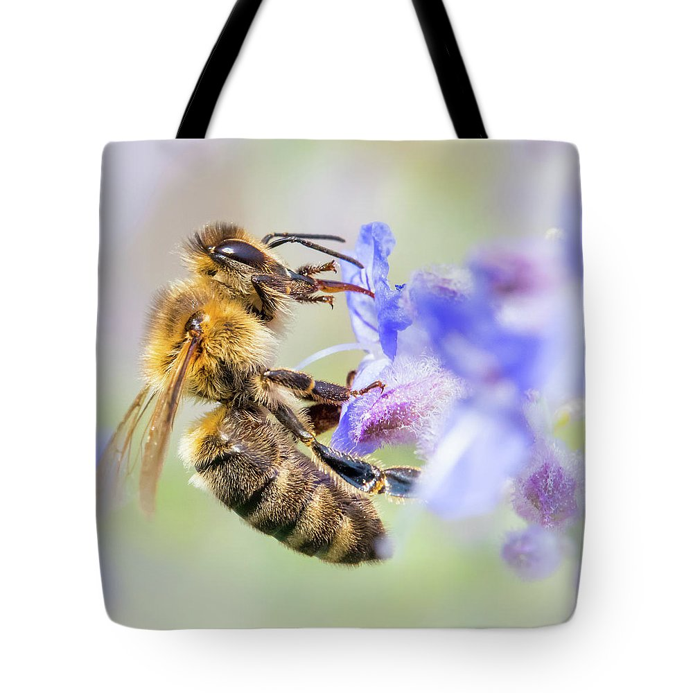 Apidae Tote Bag featuring the photograph Honey bee on Russian Sage by Jim Hughes