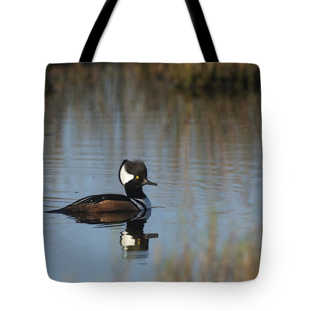 Hooded Tote Bag featuring the photograph Hooded Merganser In The Early Morning Light by David Watkins
