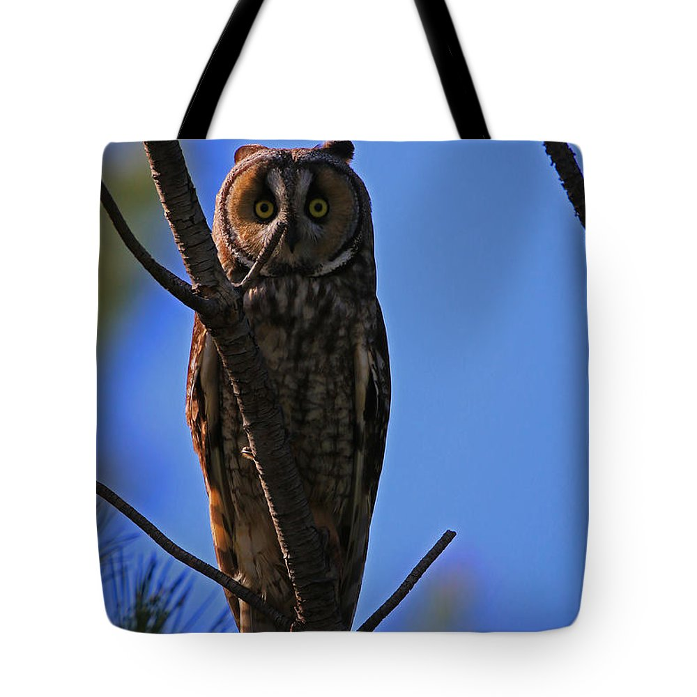 Long Tote Bag featuring the photograph Hooter Study by Craig Corwin